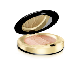 EVELINE COSMETICS MATTIFYING AND SMOOTHING MINERAL POWDER CELEBRITIES BEAUTY